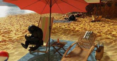 A surreal scene of a monkey taking a sunbath on the beach.