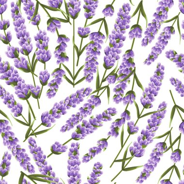 seamless pattern of purple lavender flowers, watercolor style flowers. elegant flowers. vector backgroun