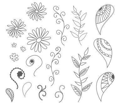 isolated set of vector drawn outlines of leaves, flowers, curls. For patterns, postcards, backgrounds.sketch collection. Decorative elements for design. Ink, vintage, rustic.