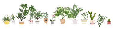 isolated objects indoor plants and flowers in different pots and planters. vector illustration in watercolor style.