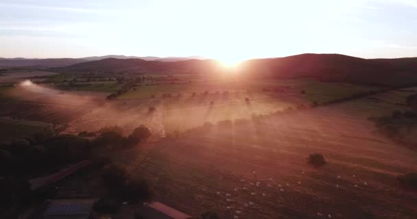 Piombino, Livorno, Tuscany, Italy. Aerial view of the farm in the countryside at dawn