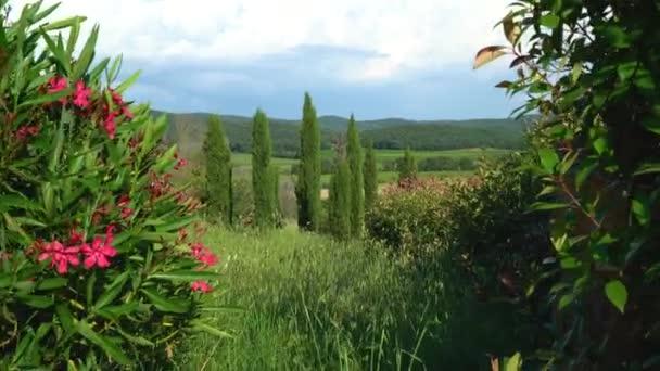 Piombino, Livorno, Toskánsko, Itálie. Krásné venkovské krajiny