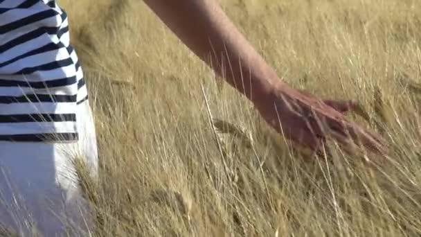 Piombino, Livorno, Toskánsko, Itálie. Dívka se prochází polem sena ve zpomaleném záběru zblízka