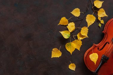 Old violin and birch branch with yellow autumn leaves on dark vintage background. Top view with copy space