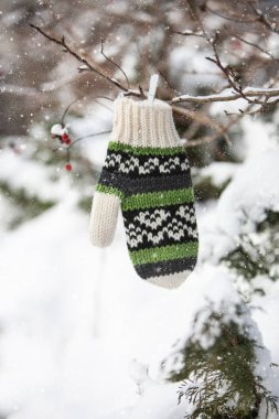 Winter decoration with mitten on tree branches with red berries
