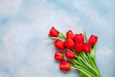 Bouquet of red tulips. Concept for Valentine's Day, womens day and other romantic events. Top view, close-up, flat lay on blue background