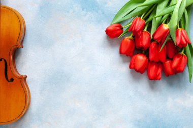 Old violin and bouquet of red tulips. Valentine day, 8 March concept. Top view, close-up on blue sky concrete background