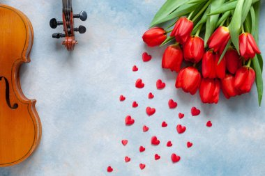 Two Old violins, red heart shape figurines and bouquet of red tulips. Valentine day, 8 March concept. Top view, close-up on blue sky concrete background
