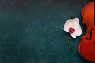 Old violin and white orchid flower. Top view, close-up on green concrete background