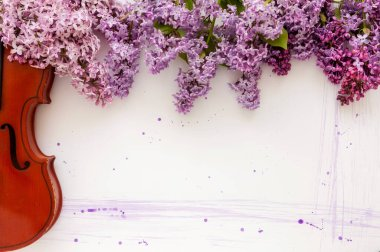 Violin and flowers of lilac on a white wooden background. Stringed musical instrument.