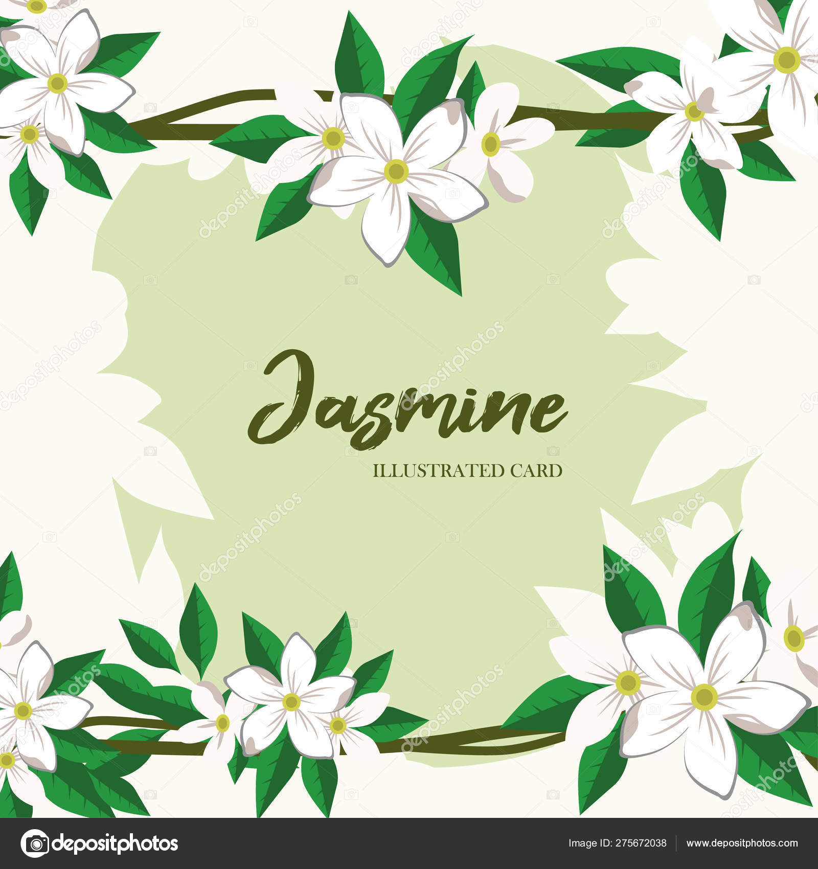 Vector Jasmine Flowers Horizontal Banner Design For Tea Natural Cosmetics Beauty Store Health Care Products Perfume Essential Oil Aromatherapy Can Be Used As Greeting Card Wedding Invitation Stock Vector C Yaroslavna2408 275672038