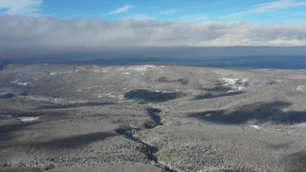 Berglandschaft an einem Wintertag, Blick auf einen verschneiten Wald aus der Höhe