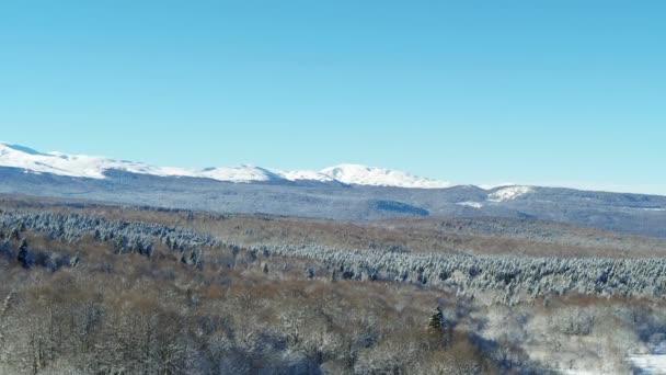 Zimní krajina: hory pokryté lesem. Letecká výstřela
