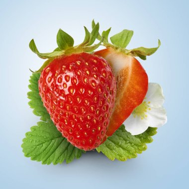 Fresh juicy strawberry with green leaves isolated at blue background, creative high resolution design