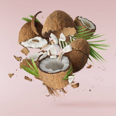Fresh ripe coconut isolated