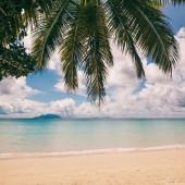 Tropický ostrov beach, dovolená pozadí
