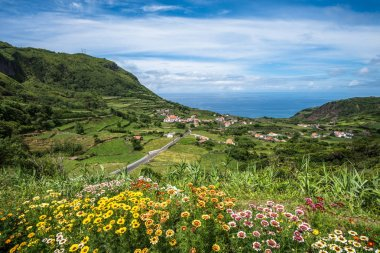 Green coastline of Flores island, Azores, Portugal