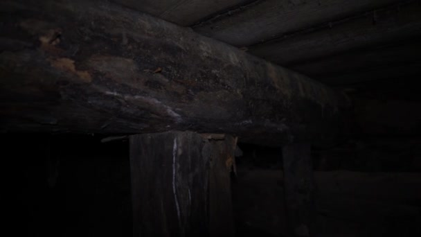 In basement visible wooden supports, rotten logs and brickwork.