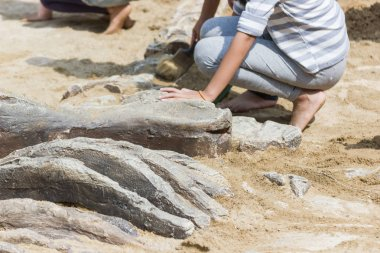 Children learning about, Excavating dinosaur fossils simulation in the park.