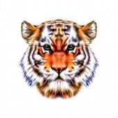Abstraktní kreativní ilustrace s barevným tygrem