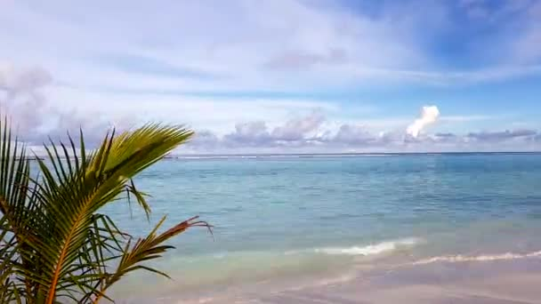 Gorgeous colorful tropical landscape. Maldives, Indian Ocean.White sand beach. Turquoise water, blue sky with snow white clouds. Green trees. Time lapse.