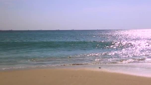 Incredibile tramonto sullisola di Eagle Beach di Aruba. Caraibi. Priorità bassa della natura bella