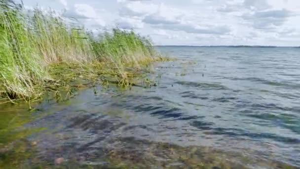 Gyönyörű tájkép. Gyönyörű balti tenger felszíne, zöld fű és kék ég fehér felhők háttér.