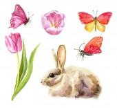 Fotografie Schönen Frühling. Abbildung mit Kaninchen und Tulpen. Aquarell hochwertige Darstellung. Osterkarte.