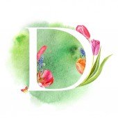 Letter D. A letter of the alphabet with spring flowers, muscari tulips, for invitations, cards, weddings and more.