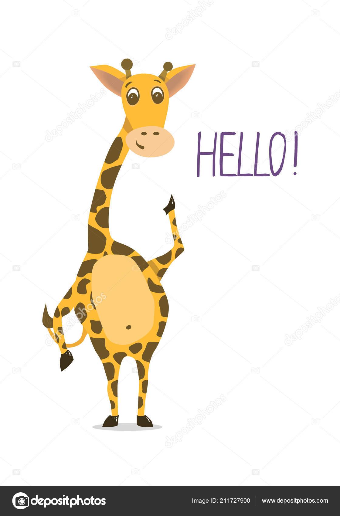 Nattou Charlotte de Giraffe | Hobbelpaarden.nl