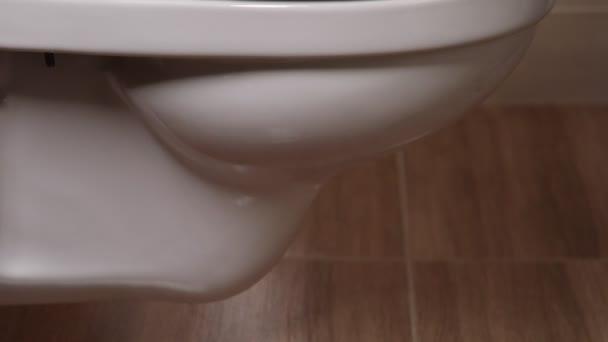 vágott nézet nő ronggyal WC tisztító