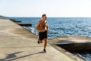 handsome adult shirtless man jogging on seashore