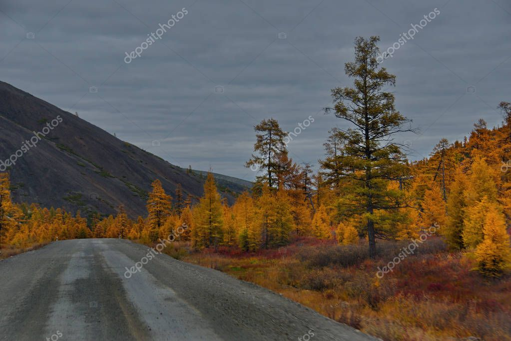 Russia. Far East. Beauty of the Federal highway M56