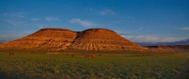 The vast expanses of the Kazakh steppes