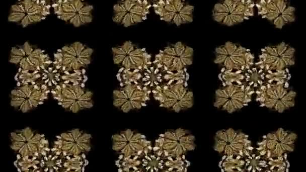 Golden pattern. Oriental ornament. Golden pattern on black colors with golden elements. Motion footage composition.