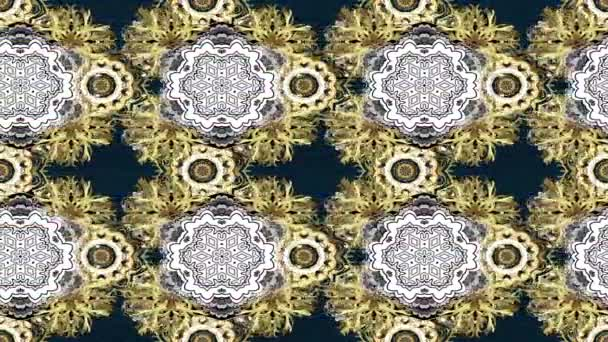 Motion footage loop composition. Royal luxury golden baroque damask vintage.