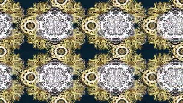 Ciclo composizione di metraggio di movimento. Reticolo dorato classico. Oriente ornamento tradizionale. Reticolo dorato con gli elementi dorati