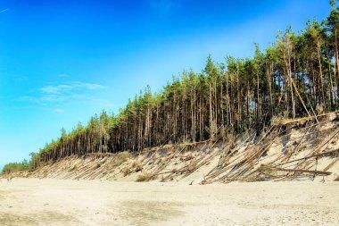 Slowinski National Park on the Baltic Sea coast, near Leba, Poland. Beautiful sandy beaches and coastal landscape on the walking trail between Leba and Moving Dunes.