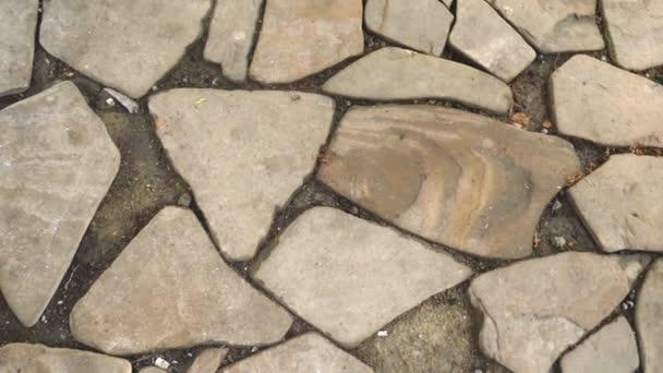 Textura samostatných kamenů na zemi. vydlážděné chodníku.