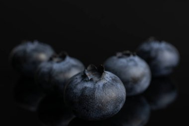 Fresj blue bilberry isolated on black glass