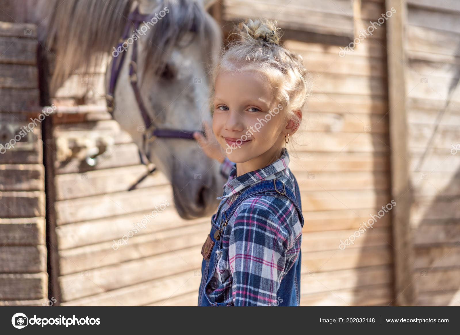 ᐈ Show Me A A Baby Horse Stock Pictures Royalty Free Child Horse Images Download On Depositphotos