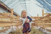 usmívající se rozkošný dítě drží kozí farmě