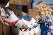 Fotografia vista laterale del bambino sorridente alimentazione cavallo presso azienda agricola