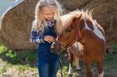 Photo pony