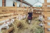Fotografie Rückansicht des Kind zu Fuß in der Scheune mit Ziegen