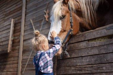 Preteen kid palming big horse at farm stock vector