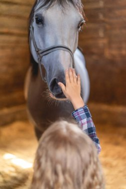 Back view of kid touching horse at farm stock vector
