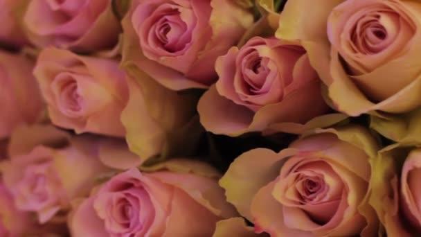Velký rotační kytici růží v vícebarevné světlo