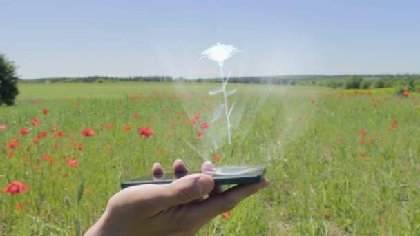 Hologram of rose flower on a smartphone