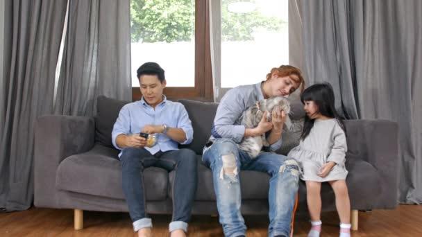 A család fogalma. A lány játszik egy macska a bátyjával.